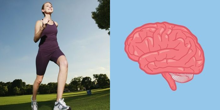 Left side: woman running in a park. Right side: Vector image of a brain. Depicting the relation between running and a healthy brain.