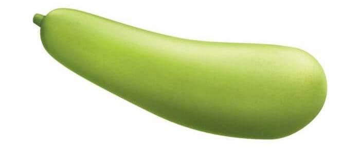Close up of whole & uncut bottle gourd.