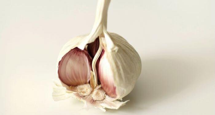 Close up of raw garlic lobe.