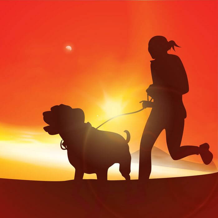 Vector image of a woman running with her dog while the sun shines in the background.
