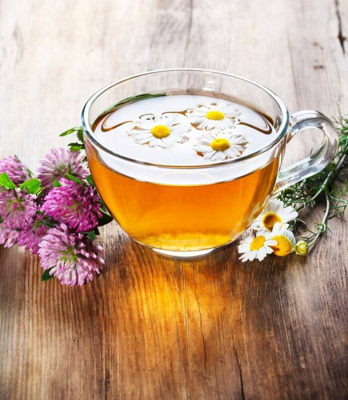 Chamomile tea in cup with chamomile flowers placed on sides.
